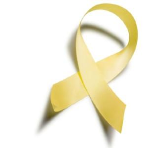 spina_bifida_awareness_ribbon
