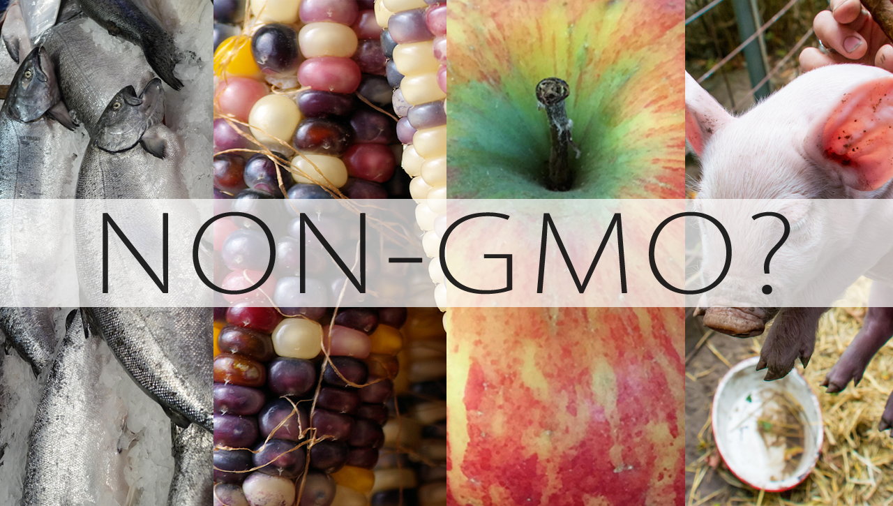 What Does Non-GMO Mean?
