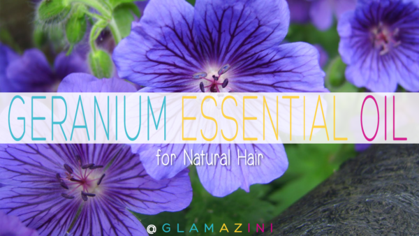 geranium essential oil for healthy natural hair